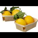 Lehdelliset Sitruunat