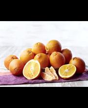 Appelsiini Navel