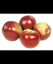 Omena ida red