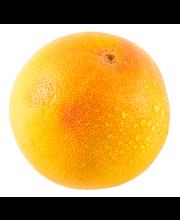 Veriappelsiini tarocco