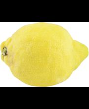 Sitruuna luomu