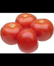 Toisenlainen Tomaatti Ii