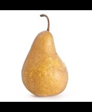 Päärynä