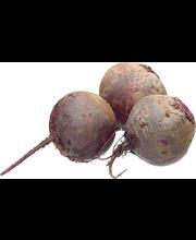 Maustepunajuuri (Etikka)
