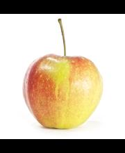 Omena zari suomi