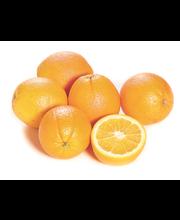 Appelsiini Shamouti