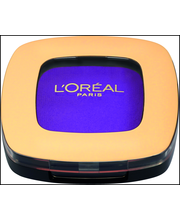 L'Oréal Paris 4,5g Color Riche Mono 309 Purple Velour -luomiväri