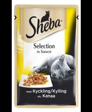 Sheba Selection 85g Kanaa kastikkeessa annospussi, täysrehua aikuisille kissoille