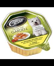 Cesar Garden 150g Kanaa Kasvissydämellä, täysrehua aikuisille koirille
