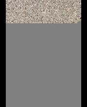 Reunanauha GT371 Cr