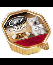 Cesar Country 150g sis. Härkää,Pastaa&Porkkanoita kastikkeessa, täysrehua aikuisille koirille