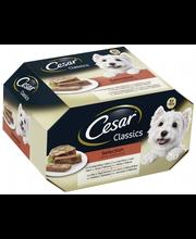 CESAR 8x150g Classics ...