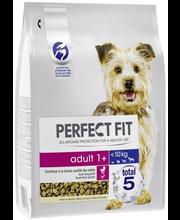 Koiran kuivaruoka 2,6kg