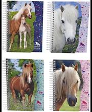 HORSES DREAMS MUISTIVI...