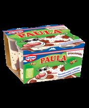 Dr. Oetker Paula 4x125g Stracciatella-vanukas ja suklaatäplät