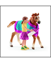 FOAL WITH BLANKET - Fo...