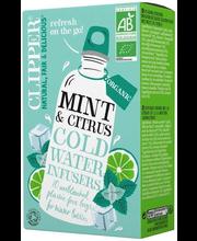 Minttu & Sitrus Cold B...