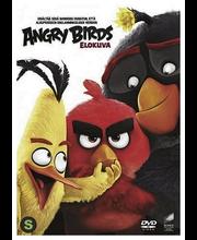 Dvd Angry Birds Elokuva