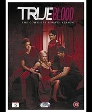 Dvd True Blood 4 Kausi