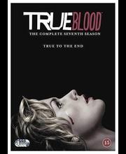 Dvd True Blood 7 Kausi