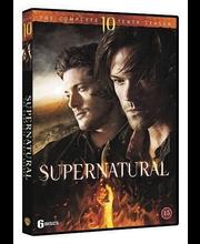 Dvd Supernatural 10 Kaus