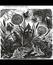 CD J. KARJALAINEN, Sinulle Sofia