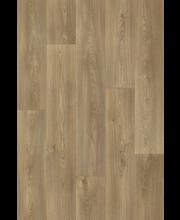 Blacktex Columbian Oak