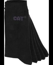 Ccat Basic Classic Pukusu