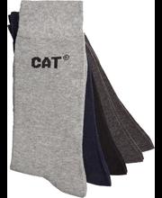 Cat business sukat mix 5p