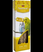 BF Festival undulaat t...