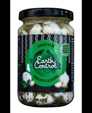 Earth Control 280/190g Valkosipuli mausteöljyssä