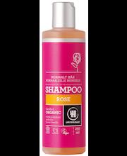 Urtekram luomu Rose shampoo normaaleille hiuksille