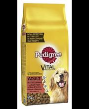Pedigree 15kg Adult Härkää ja Siipikarjaa, täysrehua aikuisille koirille