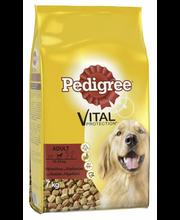 Pedigree 7kg Adult Häränlihaa ja Siipikarjaa, täysrehua 10-25kg koirille
