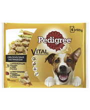 Pedigree 4x100g kastik...