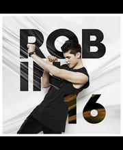 Robin:16