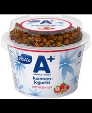 Valio A+ luonnonjogurtti 200 g ja marjamysli laktoositon