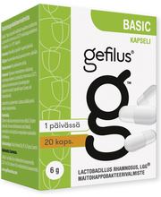 Gefilus basic