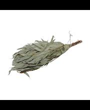 Rento kuivattu saunavihta Eukalyptus