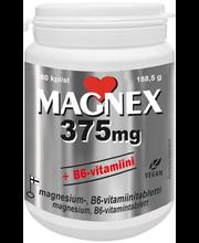 Magnex 375 mg 180 kpl magnesiumtabl