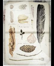 TAULU NATURE BOOK 50X7...