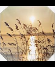 House Meri canvastaulu led-valoilla 40x40 cm