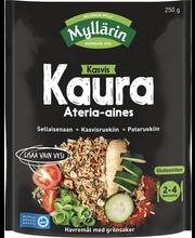 Kaura ateria-aines 250 g