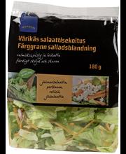 Rainbow Värikäs salaatti 180 g