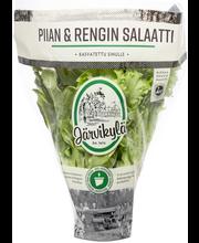 Järvikylä min130g Piian & Rengin salaatti