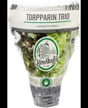 Järvikylä min. 120g Torpparin trio salaatti, ruukku