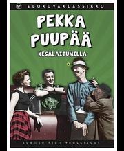 Dvd Pekka Puupää Kesälai