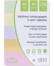 Paperi A4 250Kpl/Pkt Väri