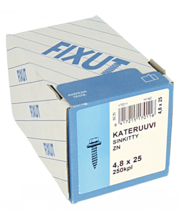 Kateruuvi, 4,8X25