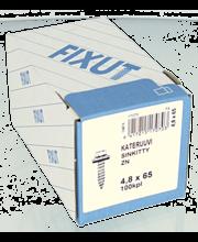 Kateruuvi, 4,8X65